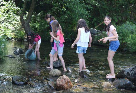 Grupo de crianças no rio a repovoar os rios de Baião
